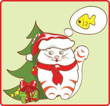 Free Cat Dreamer Stock Photos - 15784413