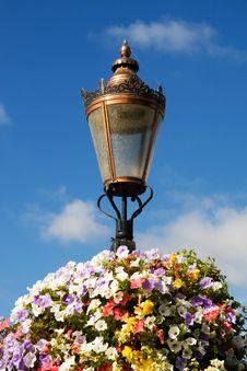 Free Flower Lamp Royalty Free Stock Image - 15785326