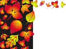 Free Autumn Background 2 Stock Photos - 15788183