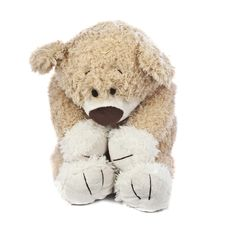 Sad And Lonely Teddy Bear Stock Images