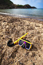 Free Snorkeling On The Beach Royalty Free Stock Image - 15791506