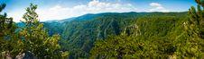Free Mountain View Point Panorama Of Tara Mountain Royalty Free Stock Photo - 15790785