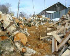 Free Wood Royalty Free Stock Photo - 15791585