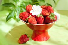 Free Strawberries On The Red Plate Stock Images - 15792394