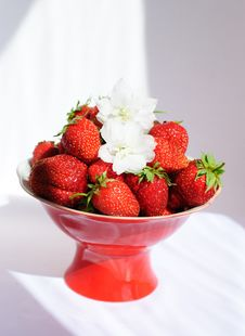 Free Strawberries On The Red Plate Royalty Free Stock Photos - 15792398