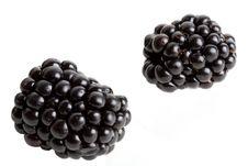 Free Blackberries Stock Photos - 15793003