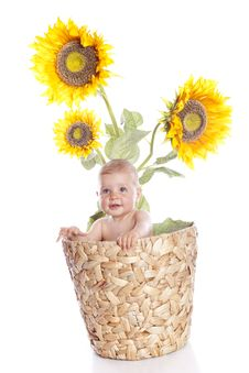 Free Baby Girl With Flowers Stock Photos - 15793063