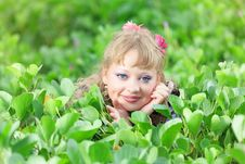 Free Woman In Grass Stock Photos - 15793323