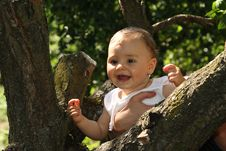 Free Happy Baby In The Forest Royalty Free Stock Image - 15796056
