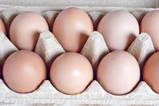 Free Eggs Stock Photography - 15797632