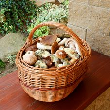 Free Mushrooms In Basket Stock Photo - 15797840