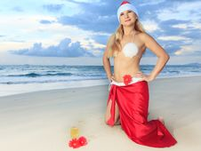 Free Tropical Christmas Stock Photo - 15798130