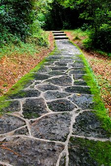 Free Paved Road Stock Photography - 15799132