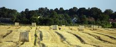 Free Hay Bales Royalty Free Stock Photos - 15799258