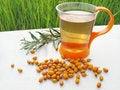 Free Fruit Tea With Orange Berries Sea Buckthorn Stock Images - 15806254