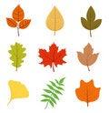 Free Autumn Leaves Set Royalty Free Stock Photo - 15806845