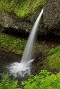 Free Ponytail Waterfalls Stock Images - 15808724