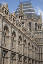 Free National History Museum, London Royalty Free Stock Photography - 15809597