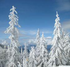 Free Snow, Sky And Sea Stock Photo - 15801690