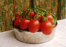 Free Tomatoes Stock Image - 15802091