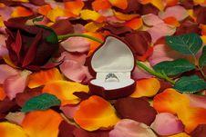 Wedding Gift Stock Photos