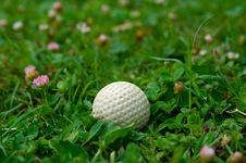 Free Golf Ball Stock Photos - 15803663