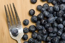 Free Blueberries Royalty Free Stock Image - 15804766