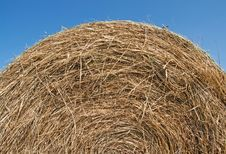 Free Bale Of Hay Over Blue Sky Royalty Free Stock Photo - 15805705