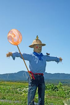 Free Scarecrow With Butterfly Net Royalty Free Stock Image - 15805716