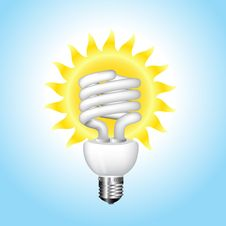 Free Economical Sunny Bulb Vector Illustration Royalty Free Stock Image - 15806776