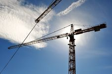 Free Crane In Beams Of The Sun Royalty Free Stock Image - 15807276
