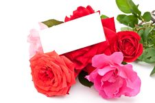 Free Roses With Card Royalty Free Stock Photos - 15808568