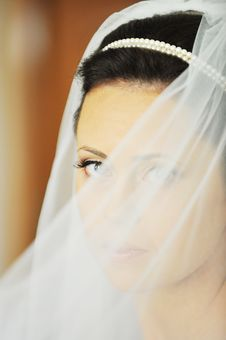 Free Beautiful  Bride Stock Photo - 15809070