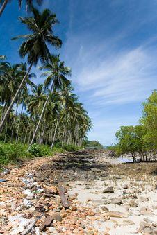 Free Rock Beach - Thailand Royalty Free Stock Photos - 15809418