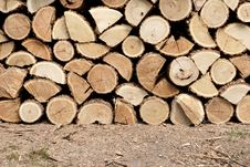 Free Woodpile Stock Images - 15809524