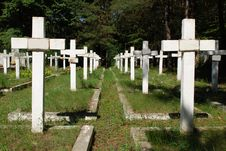 Free Military Cemetery Stock Photography - 15811432