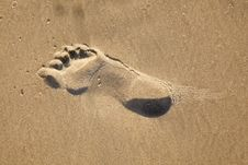 Free Footprints At The Beach Stock Photos - 15812253