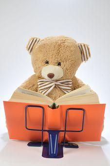 Free Stuffed Bear Reading A Book Royalty Free Stock Image - 15814896