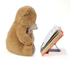 Free Stuffed Bear Reading A Book Royalty Free Stock Photos - 15814978