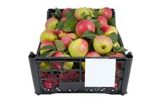 Free The Box Of Bright Apples Isolated Over White Royalty Free Stock Image - 15816406
