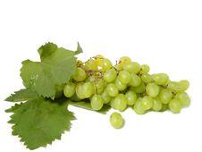 Free Grapes Stock Image - 15816971