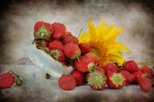 Free Strawberry And Sunflowerraspberry Stock Images - 15819084