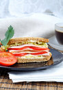 Free Fresh And Delicious Sandwich Stock Photos - 15821683