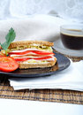 Free Fresh And Delicious Classic Sandwich Royalty Free Stock Images - 15821689