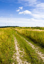 Free Road In Field Royalty Free Stock Images - 15829999