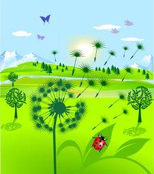 Free Dandelion And Ladybird Stock Photos - 15821453