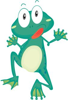 Free A Frog Royalty Free Stock Photos - 15822318