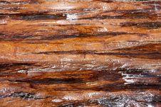 Free Wood Stock Photo - 15822960