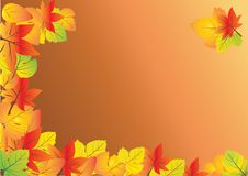 Free Autumn Background Royalty Free Stock Photo - 15823945