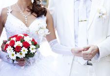 Bridegroom Keeping Bride Hand Royalty Free Stock Image